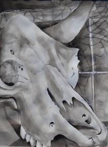 'Skull' 2015
